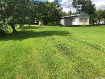 Homes for Sale in Saskatchewan, Hudson Bay Rm No. 394, Saskatchewan $12,800