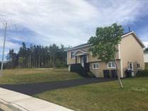 Homes for Sale in Newfoundland, Paradise, Newfoundland and Labrador $319,900
