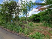 Lots and Land for Sale in Bo. Guerrero, Aguadilla, Puerto Rico $84,900