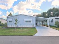 Homes for Sale in Foxwood Village, Lakeland, Florida $35,000