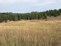 Lots and Land for Sale in Michigan, Kaleva, Michigan $113,900