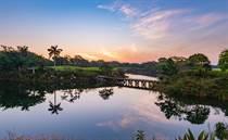 Homes for Sale in Merida, Yucatan $497,571