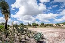 Lots and Land for Sale in Los Labradores, San Miguel de Allende, Guanajuato $97,500