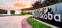Homes for Sale in Mayakoba City, Quintana Roo $10,500,000