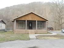 Homes for Sale in Delbarton, West Virginia $115,000
