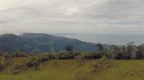Lots and Land for Sale in Uvita, Puntarenas $250,000