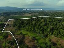 Farms and Acreages for Sale in Puerto Jimenez, Puntarenas $99,000