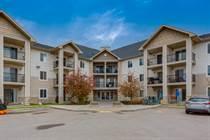 Condos Sold in Evergreen, Calgary, Alberta $149,000