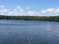 Recreational Land for Sale in spanish, Ontario $1,450,000
