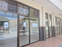 Homes for Rent/Lease in Ensenada, Baja California $20,000 monthly