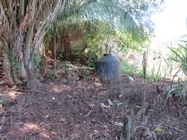 Homes for Sale in Los Ayala, Nayarit $57,500