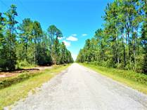 Lots and Land for Sale in Hastings, Florida $27,000