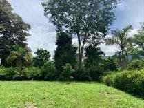 Lots and Land for Sale in Uvita, Puntarenas $43,000
