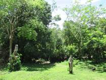 Lots and Land for Sale in Los Tambos, Cayo $770,000