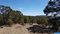 Lots and Land for Sale in New Mexico, Mimbres, New Mexico $65,000