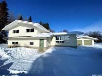 Homes for Sale in Naicam, Saskatchewan $309,900