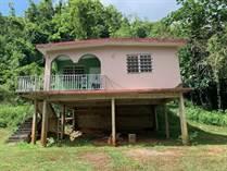 Homes for Sale in Bo Dominguito, Arecibo, Puerto Rico $75,000