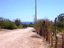 Lots and Land for Sale in Cardonal, Baja California Sur $55,000