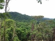 Lots and Land for Sale in Bahia Ballena, Puntarenas $64,000