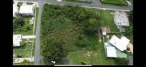 Lots and Land for Sale in Tierras Nuevas Saliente, Manatí, Puerto Rico $100,000