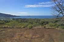 Lots and Land for Sale in Palo Alto, Playa Hermosa, Guanacaste $240,000