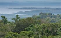 Lots and Land for Sale in Osa, Sierpe , Puntarenas $85,000