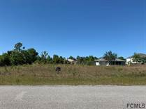 Homes for Sale in Seminole Woods, Palm Coast, Florida $35,000