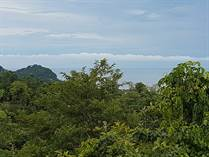 Homes for Sale in Tulemar , Manuel Antonio, Puntarenas $265,000