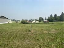 Lots and Land for Sale in Rapid City, Manitoba $11,000