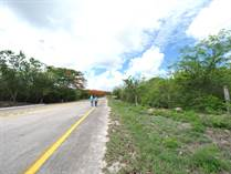 Lots and Land for Sale in Centro, Merida, Yucatan $179,900
