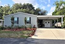 Homes for Sale in Southport Springs, Zephyrhills, Florida $53,000