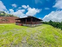 Homes for Sale in Bo. Cedro Arriba, Naranjito, Puerto Rico $400,000