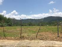 Lots and Land for Sale in Barrio Rincon, Gurabo, Puerto Rico $17,500