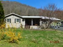 Homes for Sale in Delbarton, Williamson, West Virginia $184,000