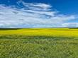 Farms and Acreages Sold in Lafleche, Saskatchewan $10,500,000