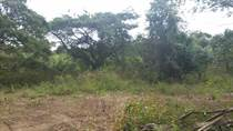 Lots and Land for Sale in Bo. Cotto, Isabela, Puerto Rico $105,000