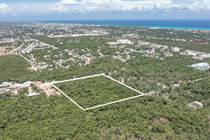 Lots and Land for Sale in Playa del Carmen, Quintana Roo $4,500,000