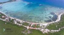 Lots and Land for Sale in Tulum, Quintana Roo $2,100,000