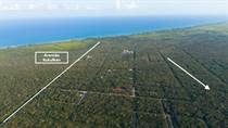 Lots and Land for Sale in Region 15, Tulum, Quintana Roo $325,000