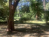 Homes for Sale in Matapalo North Pacific, Guanacaste $42,000