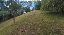 Lots and Land for Sale in Escaleras , Dominical, Puntarenas $259,000
