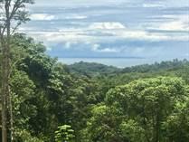 Lots and Land for Sale in Ojochal, Ojocahl, Puntarenas $139,000