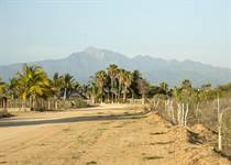 Lots and Land for Sale in Migriño, Baja California Sur $140,000