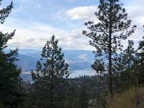 Lots and Land for Sale in Anarchist Mountain, Osoyoos, British Columbia $398,998