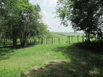 Farms and Acreages for Sale in Los Tambos, Cayo $315,000