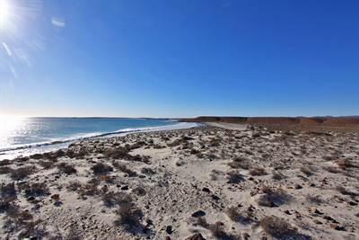Santa Rosalillita 3.5 acres ocean front!