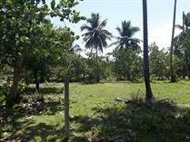 Lots and Land for Sale in Sabaneta, Sabaneta Yasica, Espaillat $89,900