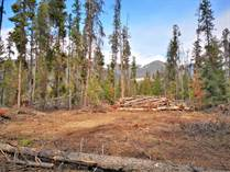 Lots and Land for Sale in Tete Jaune Cache, Valemount, British Columbia $125,000