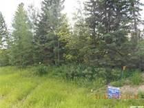 Lots and Land for Sale in Goodsoil, Saskatchewan $39,999