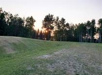 Lots and Land for Sale in Buck Lake, Alberta $98,500